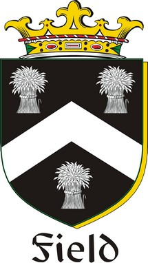 Thumbnail Field Family Crest / Irish Coat of Arms Image Download