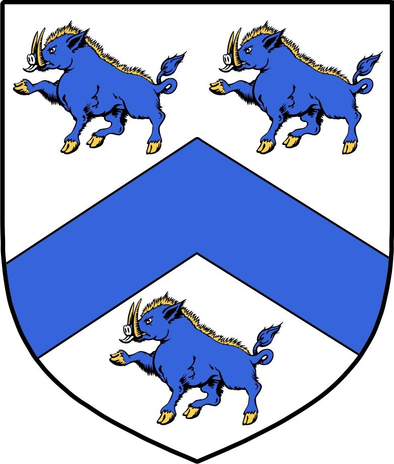 Thumbnail MacGann Family Crest / Irish Coat of Arms Image Download