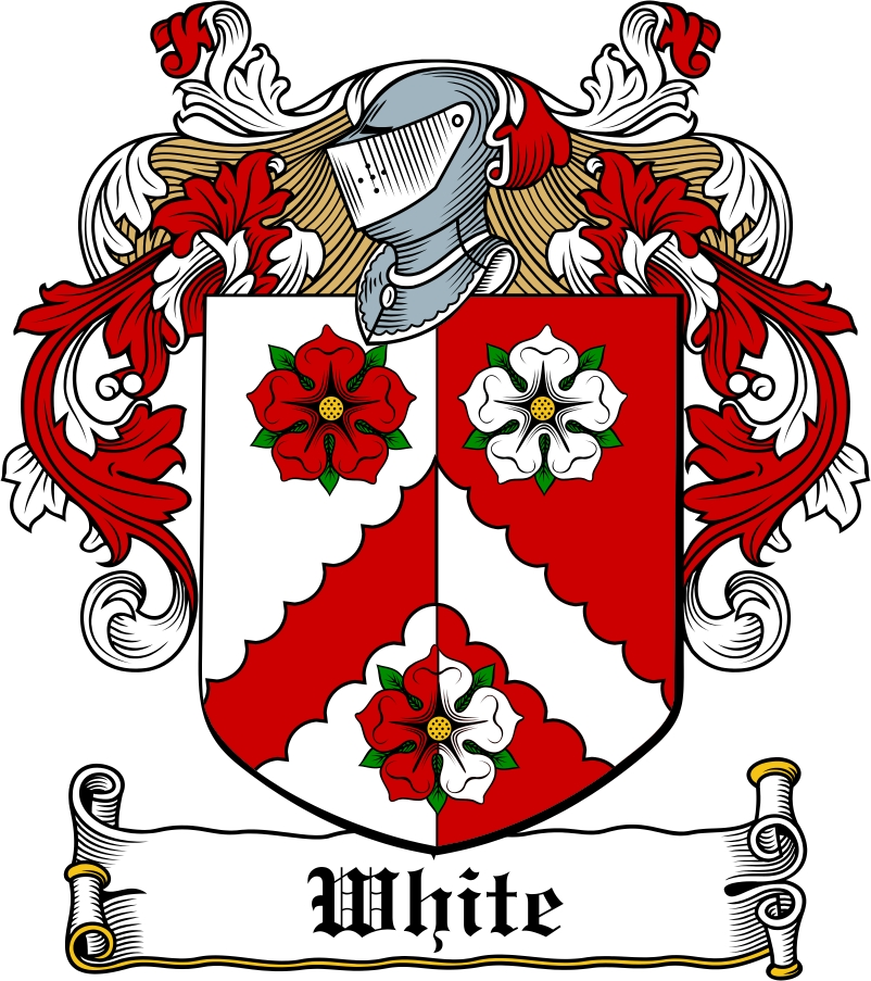 Thumbnail White Family Crest / Irish Coat of Arms Image Download