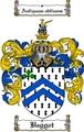 Thumbnail Baggot Family Crest  Baggot Coat of Arms