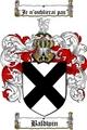 Thumbnail Baldwin Family Crest / Baldwin Coat of Arms