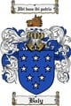 Thumbnail Baly Family Crest  Baly Coat of Arms