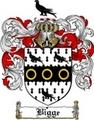 Thumbnail Bigge Family Crest  Bigge Coat of Arms