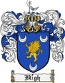 Thumbnail Bligh Family Crest Bligh Coat of Arms Digital Download