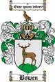 Thumbnail Bowen Family Crest / Bowen Coat of Arms