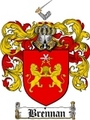 Thumbnail Brennan Family Crest / Brennan Coat of Arms