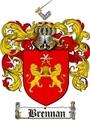 Thumbnail Brennan Family Crest / Brennan Coat of Arms