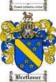 Thumbnail Brettoner Family Crest  Brettoner Coat of Arms
