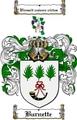 Thumbnail Burnette Family Crest  Burnette Coat of Arms