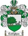Thumbnail Callighan Family Crest  Callighan Coat of Arms