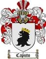 Thumbnail Caputo Family Crest / Caputo Coat of Arms