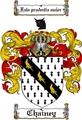 Thumbnail Chainey Family Crest  Chainey Coat of Arms