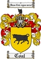 Thumbnail Coal Family Crest  Coal Coat of Arms