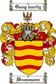 Thumbnail Drummann Family Crest  Drummann Coat of Arms