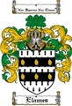 Thumbnail Elames Family Crest  Elames Coat of Arms