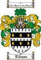 Thumbnail Elleam Family Crest  Elleam Coat of Arms