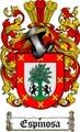 Thumbnail Espinosa Family Crest  Espinosa Coat of Arms