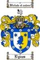 Thumbnail Eynes Family Crest  Eynes Coat of Arms