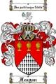 Thumbnail Feagan Family Crest  Feagan Coat of Arms