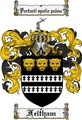 Thumbnail Feltham Family Crest Feltham Coat of Arms Digital Download