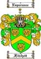 Thumbnail Fitchett Family Crest  Fitchett Coat of Arms