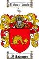Thumbnail Fitzjames-2 Family Crest Fitzjames-2 Coat of Arms Digital Download