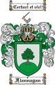 Thumbnail Flannagan Family Crest  Flannagan Coat of Arms