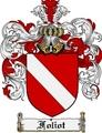 Thumbnail Foliot Family Crest Foliot Coat of Arms Digital Download