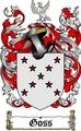 Thumbnail Goss Family Crest  Goss Coat of Arms