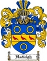 Thumbnail Hadleigh-2 Family Crest Hadleigh-2 Coat of Arms Digital Download