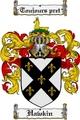 Thumbnail Hawkin Family Crest  Hawkin Coat of Arms