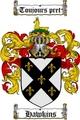 Thumbnail Hawkins Family Crest / Hawkins Coat of Arms