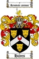 Thumbnail Hayes Family Crest / Hayes Coat of Arms