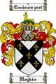 Thumbnail Haykin Family Crest  Haykin Coat of Arms