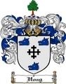 Thumbnail Hoag Family Crest  Hoag Coat of Arms