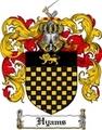 Thumbnail Hyams Family Crest Hyams Coat of Arms Digital Download
