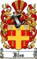 Thumbnail Jiles Family Crest  Jiles Coat of Arms