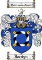 Thumbnail Jocelyn Family Crest Jocelyn Coat of Arms Digital Download