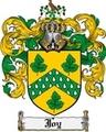 Thumbnail Joy Family Crest Joy Coat of Arms Digital Download