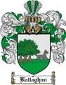 Thumbnail Kallaghan Family Crest  Kallaghan Coat of Arms