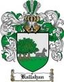 Thumbnail Kallahan Family Crest  Kallahan Coat of Arms