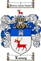 Thumbnail Lunny Family Crest  Lunny Coat of Arms