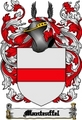 Thumbnail Manteuffel Family Crest  Manteuffel Coat of Arms Digital Download