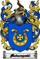 Thumbnail Mataczynski Family Crest  Mataczynski Coat of Arms Digital Download