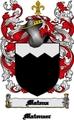 Thumbnail Matena Family Crest  Matena Coat of Arms Digital Download