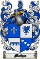 Thumbnail Mathes Family Crest  Mathes Coat of Arms Digital Download