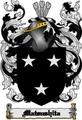 Thumbnail Matsushita Family Crest  Matsushita Coat of Arms Digital Download