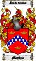 Thumbnail Mayhew Family Crest  Mayhew Coat of Arms Digital Download