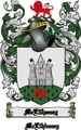 Thumbnail Mcellhenny Family Crest  Mcellhenny Coat of Arms Digital Download