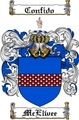 Thumbnail Mcelwee Family Crest Mcelwee Coat of Arms Digital Download